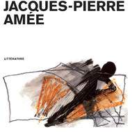 """Nouveauté roman : """"Le ciel est plein de pierres"""", de Jacques-Pierre Amée (Infolio, 2011)"""